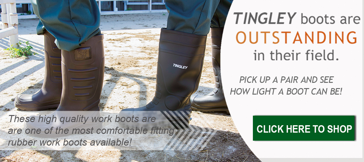 Tingley Boots on Pella Vet